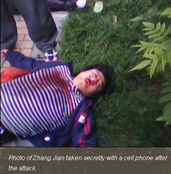 Zhang Jian CAA - screenshot