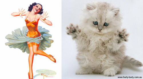 cat look like pinup