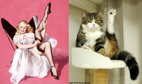 cat pinupgirl