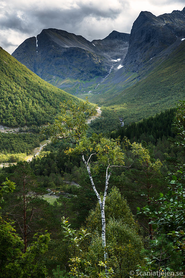 mountains norway innfjorden böstölen