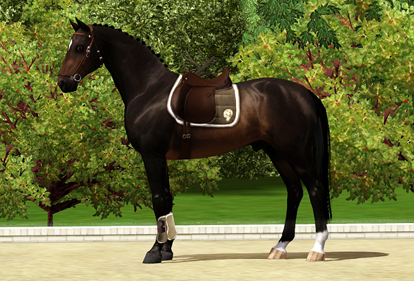 Equus-sims cc-database: driving harness 1.