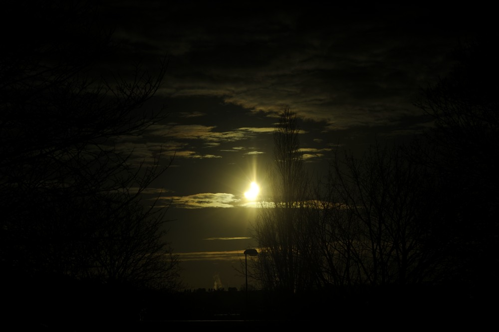 2011-01-04:015 Solar Eclipse by Magnus Norden