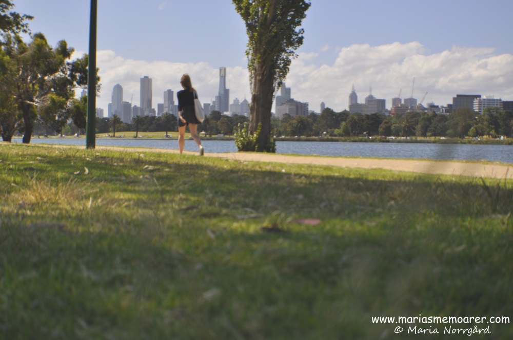 green areas in Melbourne: Albert Park