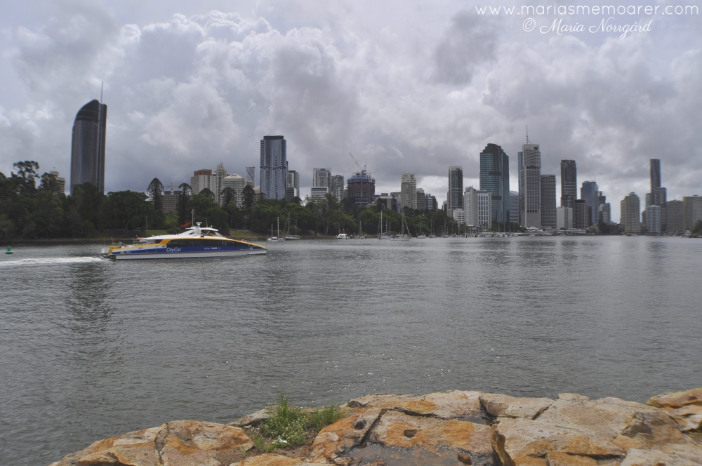 public transportation in Brisbane / kollektivtransport i Brisbane: Citycat river boat