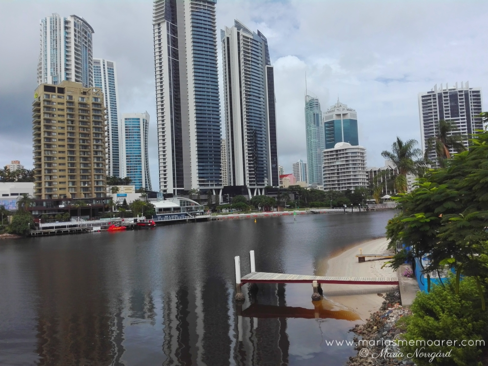 activities in Brisbane / aktiviteter i Brisbane: river walks / promenad vid floden