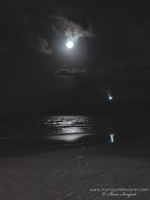 Byron Beach at night