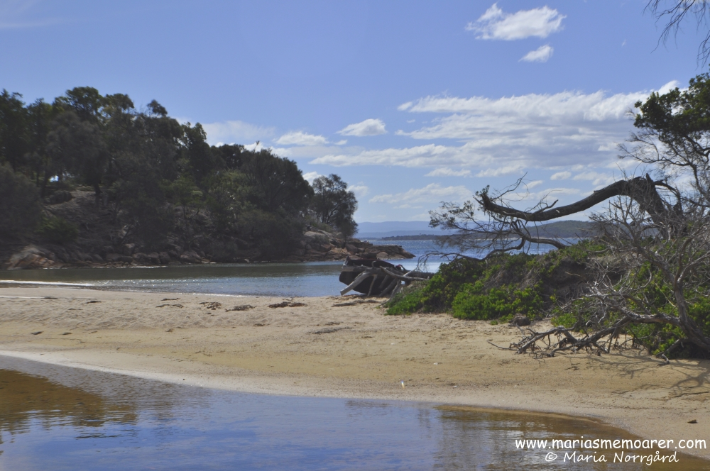 Coles Bay, non-touristic beach in Tasmania