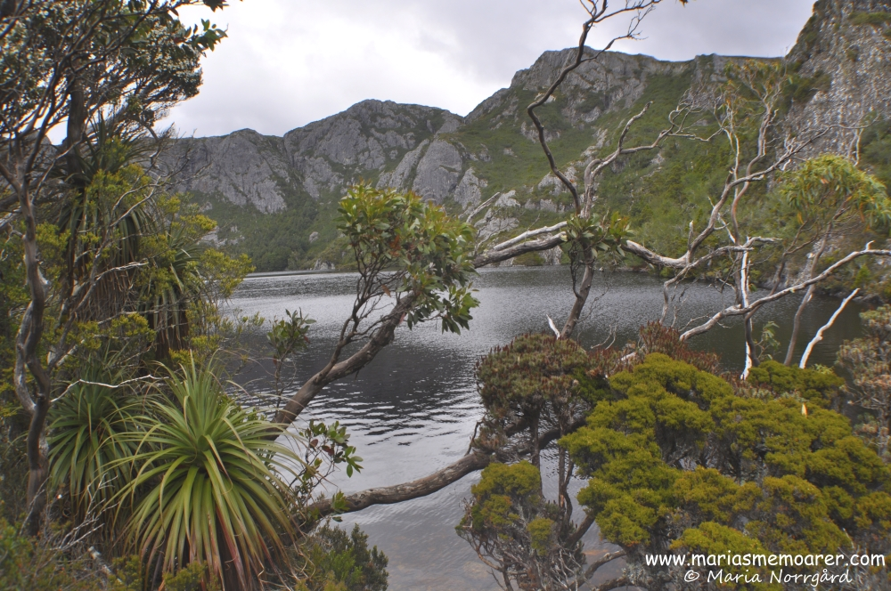 Crater Lake in Cradle Mountain, Tasmania