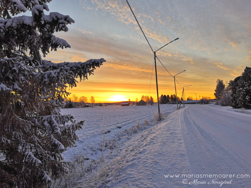sunrise Finland midwinter december