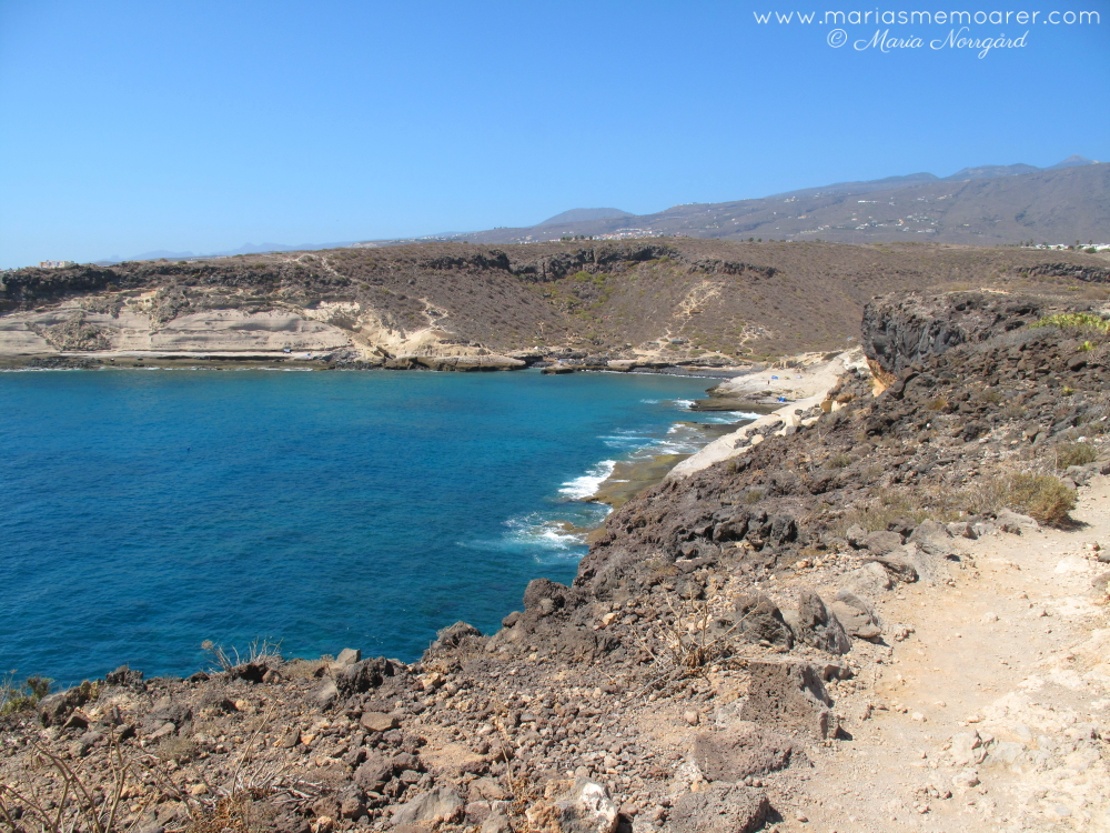 photo challenge fotoutmaning climate klimat - south tenerife dry and coastal
