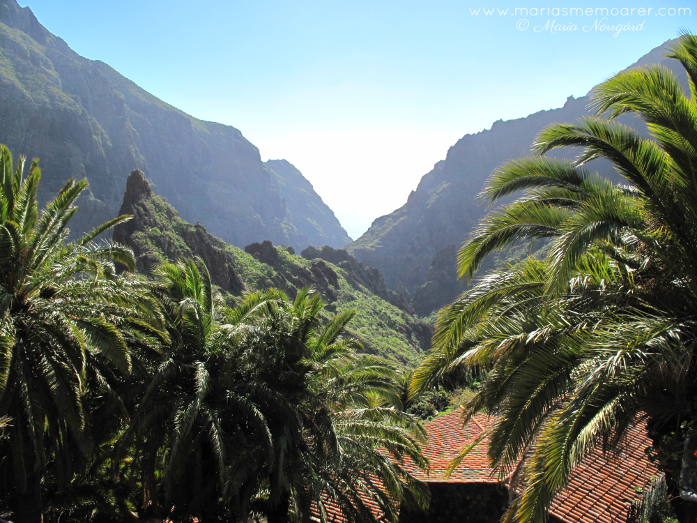photo challenge fotoutmaning climate klimat - green and lush mountaneous masca tenerife