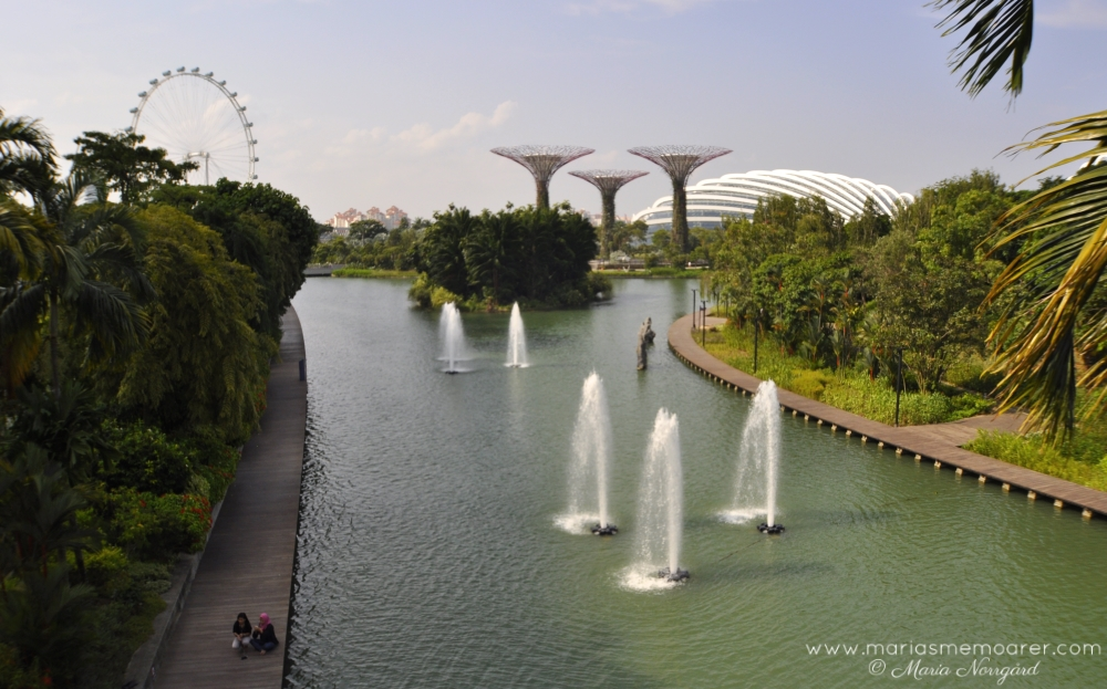 Sightseeing in Singapore / sevärdheter i Singapore