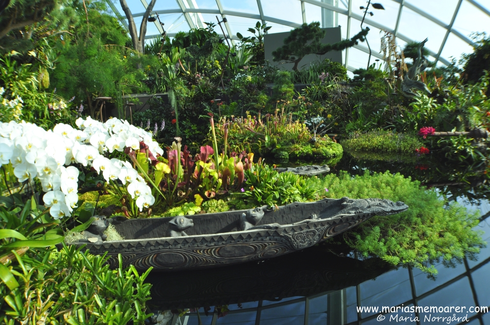 beautiful pond in Cloud Forest glasshouse, Gardens by the Bay, Singapore / vacker damm i Cloud Forest växthus