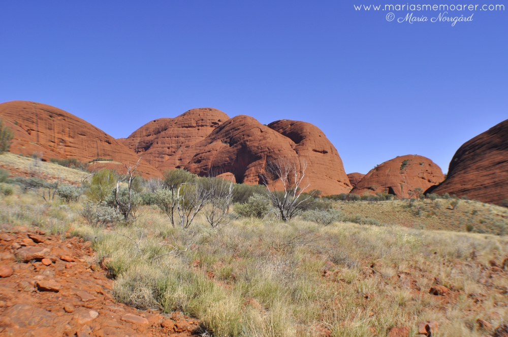 Kata Tjuta, Valley of the Winds walk, Australiens mitt