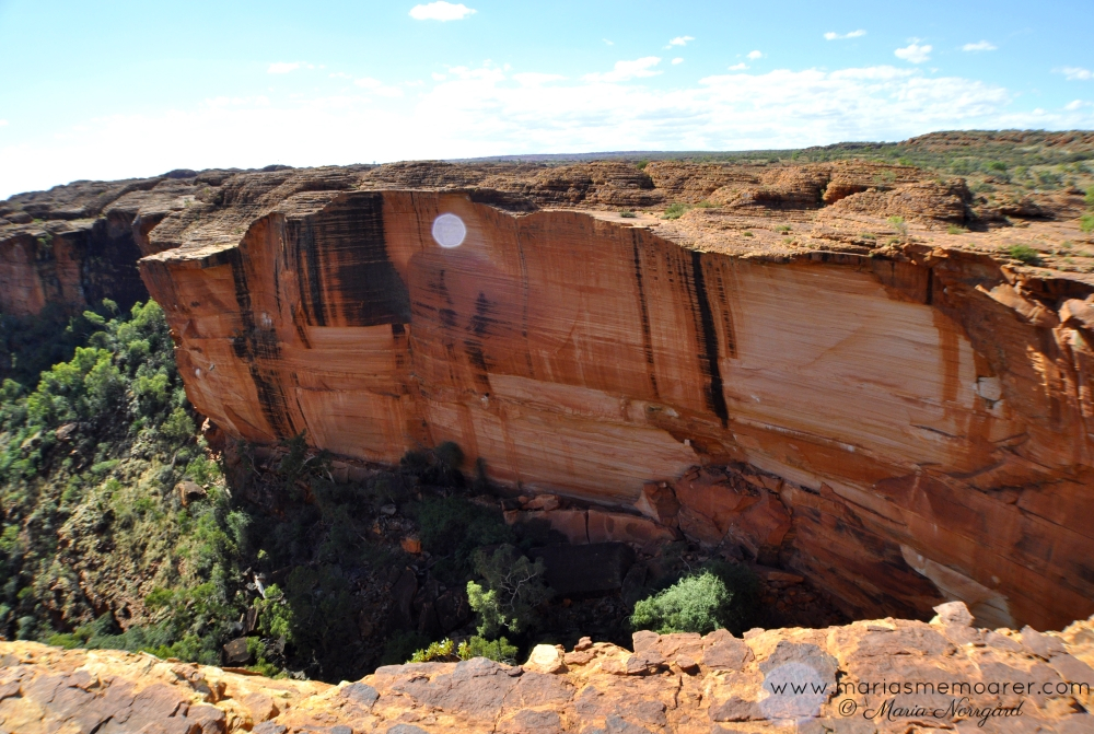 Kings Canyon, watarrka national park, Northern Territory, Australia / nationalpark i Australien