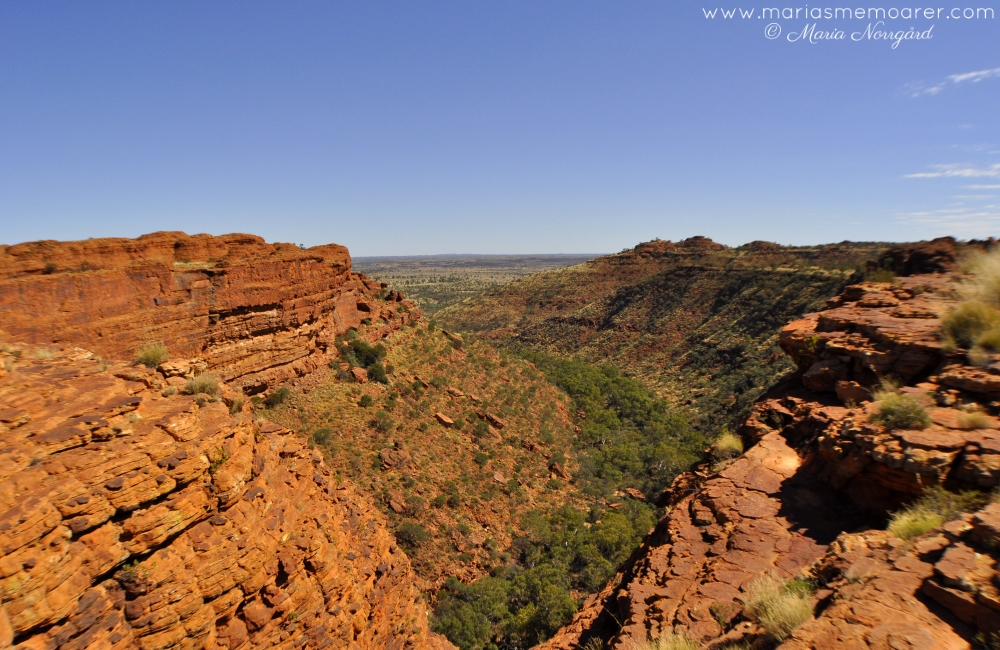 Kings Canyon in Northern Territory, one of the best hiking spots in Australia / Kings Canyon, en av de bästa platserna för vandring i Australien