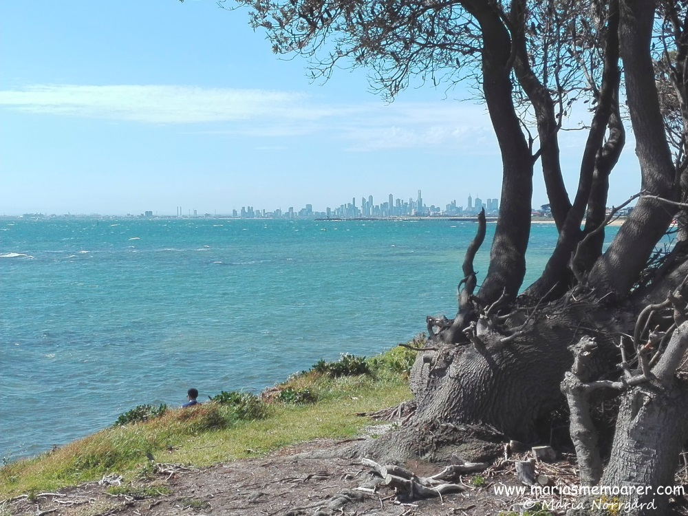 View of the sea and city skyline in Brighton, Melbourne