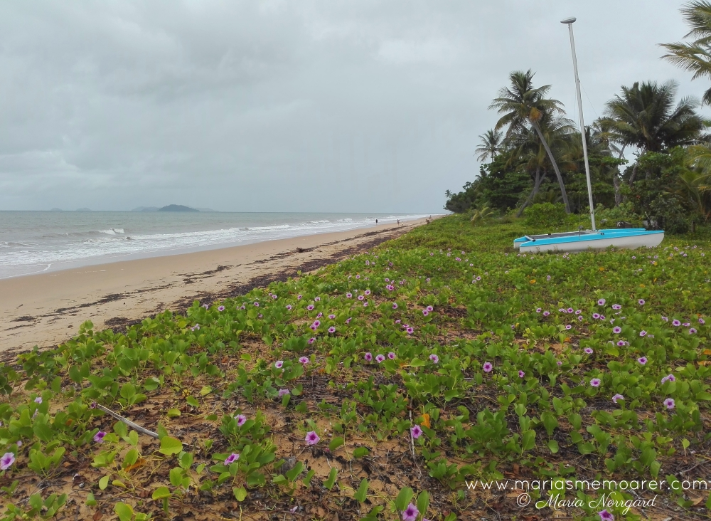 Far North Queensland, Mission Beach - tropiska Queensland i Australien: Mission Beach