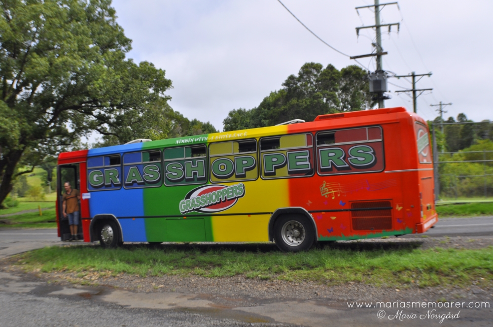 Grasshoppers rainbow bus, Nimbin
