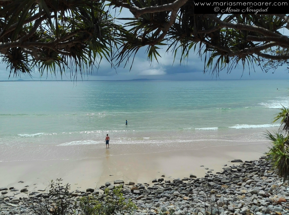 Noosa Headlands, Queensland, Australien