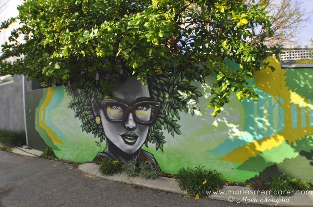 Northbridge street art lemon tree - gatukonst i Perth, Australien