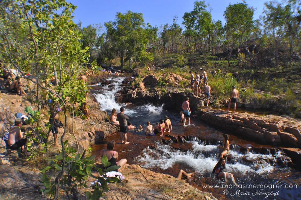 Litchfield nationalpark, Tjaetaba Falls i Greenant Creek, Australien