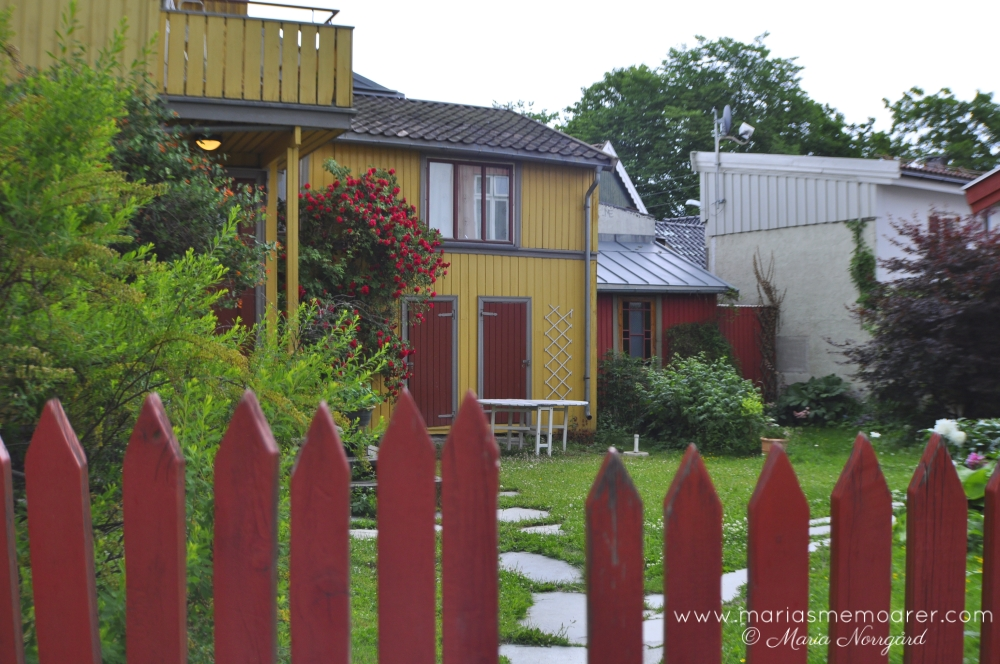 beautiful and tranquile places in oslo - Kampen neighbourhood