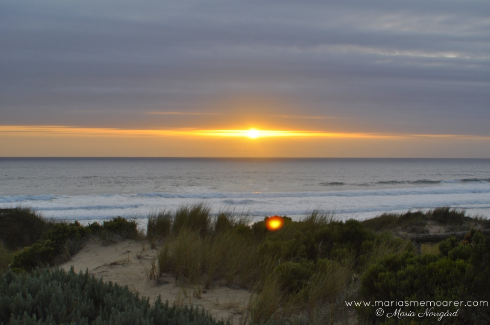 Sunset on Phillip Island, Australia / solnedgånd i Australien