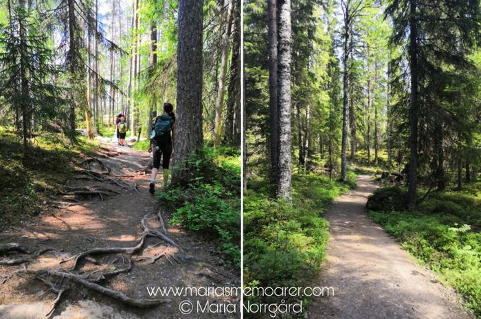 hiking trails in Finland - Helvetinjärvi National Park