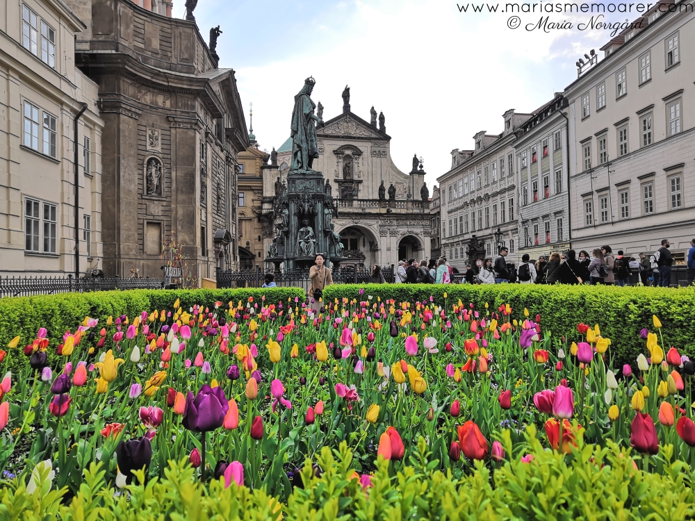 prague - the perfect spring destination