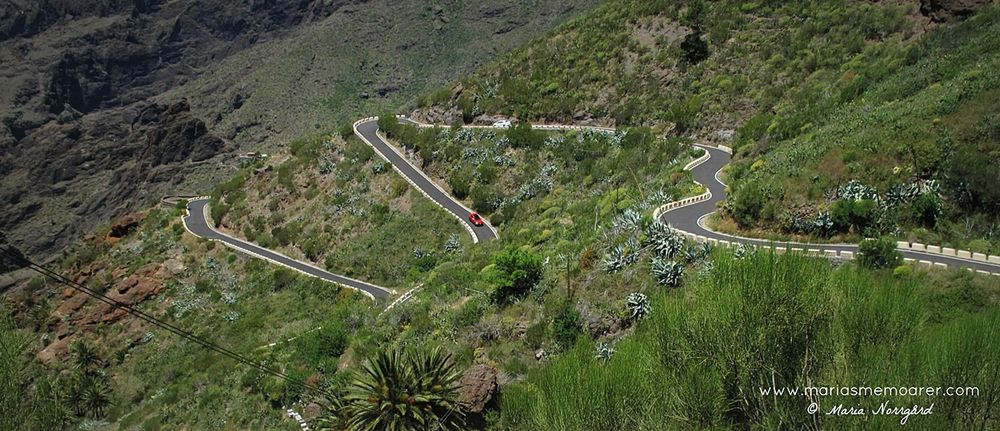 roadtrip on Tenerife, Canary Islands