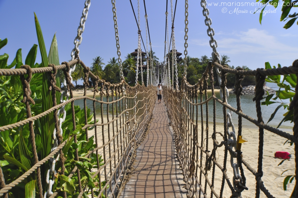 Palawan Beach rope bridge / hängbro, Sentosa Island, Singapore