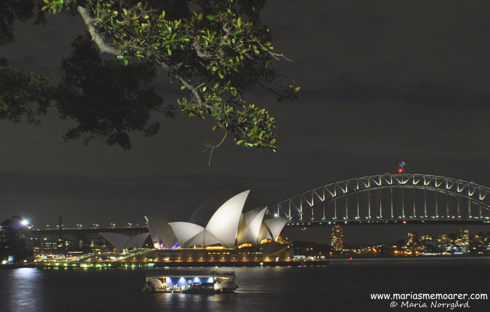 Sydney photography by night - Opera House and Harbour Bridge from Mrs Macquaries Point