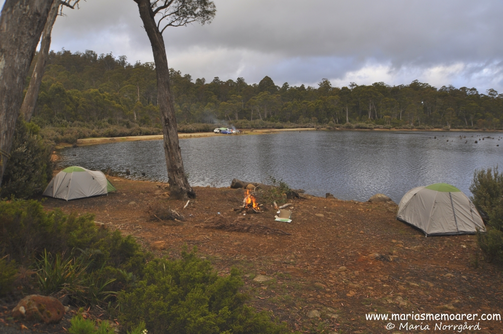 camping at Lake St Clair in Tasmania