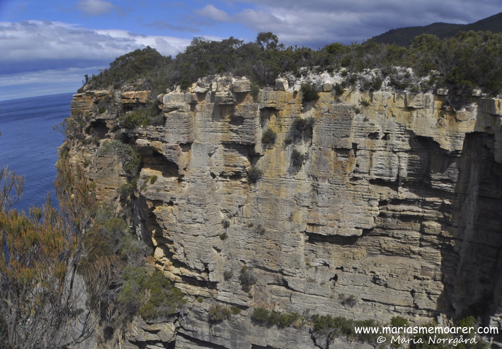 Impressive rocks at Devils Kitchen, Tasmania