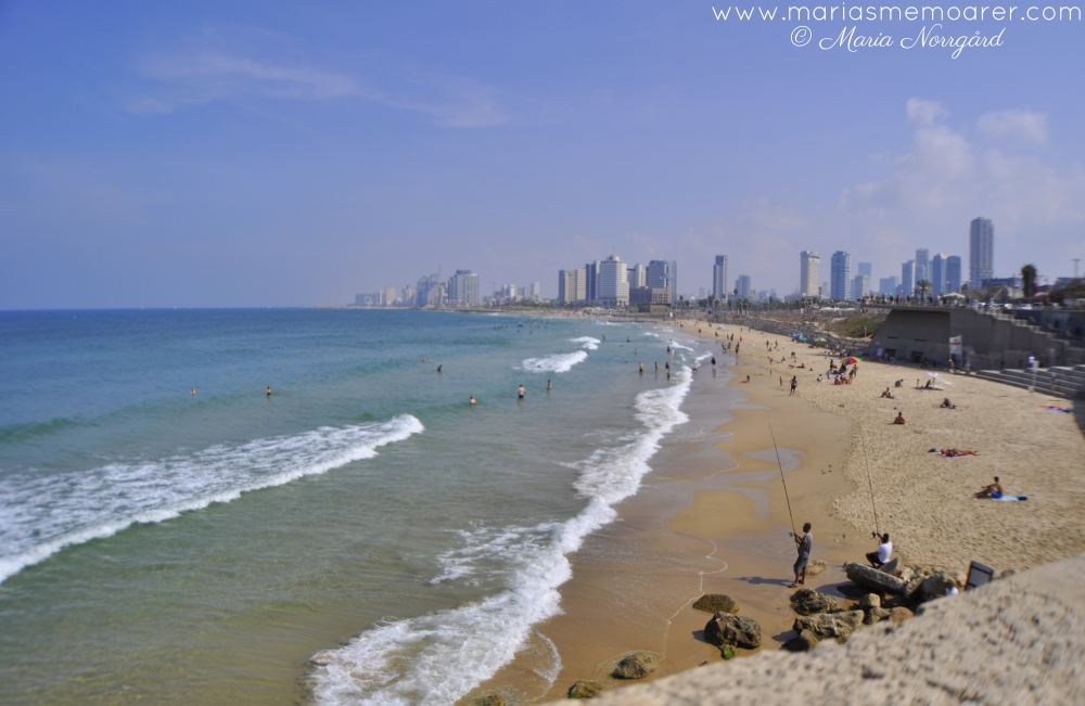 view of beach and skyscrapers in Tel Aviv, Israel