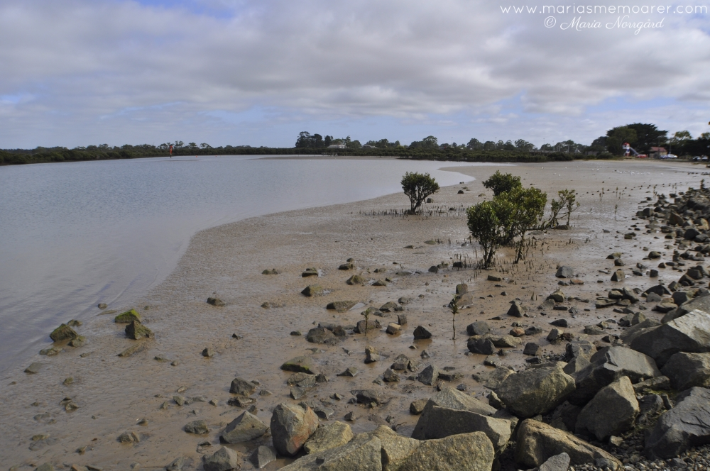 Tooradin Foreshore in Victoria is a popular stop on the way to Phillip Island
