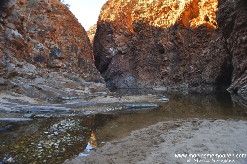 The creek in Redbank Gorge in West MacDonnell National Park, Northern Territory, Australia / Australien