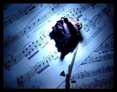Dark rose on sheet music :)