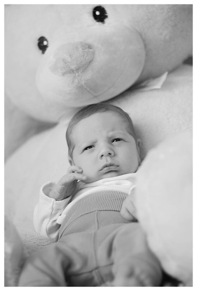 New born baby boy, 2 weeks old, propped up by giant teddy, black and white photo of new born