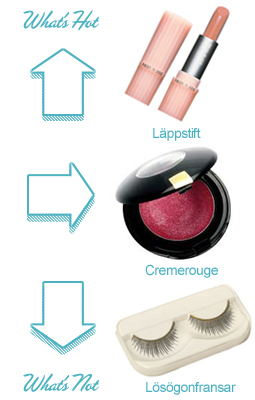 what's hot and what's not - Make up