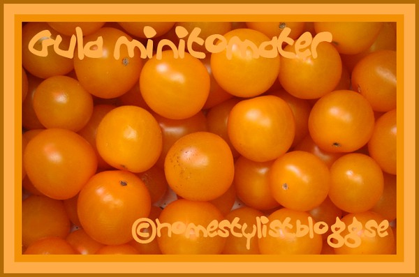 Gula minitomater. Yellow mini tomatoes. Copyright homestylist.blogg.se