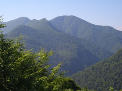 Green Hills of Abkhazia II