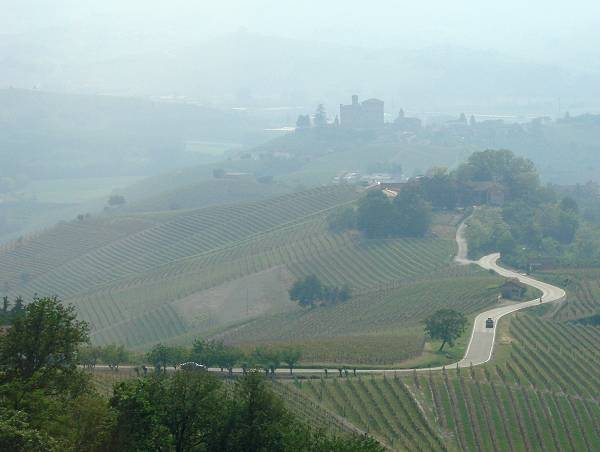 Misty wineyard hills in Grinzane Cavour area