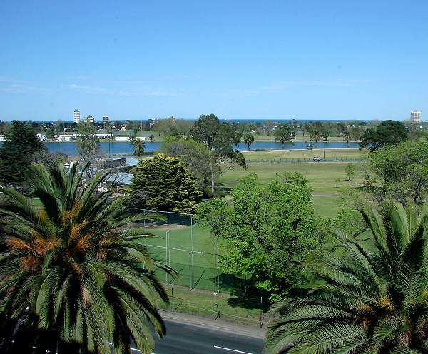 Albert Park view from hotel room