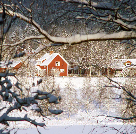 Snowy houses across river
