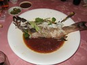 Streamed Red Grouper with Japan Miso Sauce