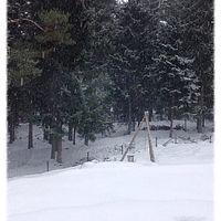 Det snöar! ❄️